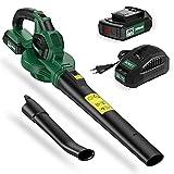 AOKEY Soplador de hojas, batería de 20 V, 150-210 km/h, velocidad del aire, carga rápida de 2000 mAh, soplador de hojas con batería y cargador
