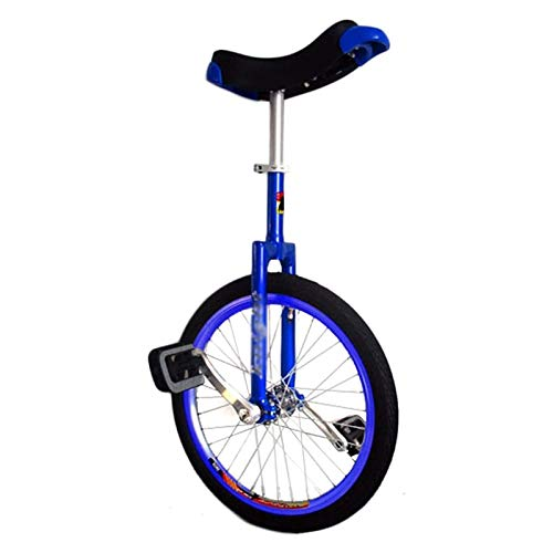 AHAI YU Kids/Beginners 20inch Wheel Unicycle, Child Age 9/10/12/14/15 Years Old School Balance Cycling, with Alloy Rim & Skidproof Tire, for Sports Exercise (Color : BLUE)