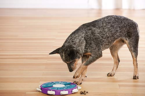 Nina Ottosson by Outward Hound Dog Twister Interactive Treat Puzzle Dog Toy, Advanced