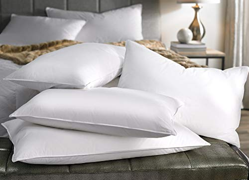 """W Hotels Down Pillow - Plush, White Duck Down Pillow - King (20"""" x 36"""")"""