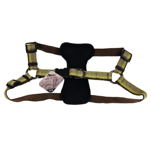 Coastal - K-9 Explorer - Reflective Adjustable Padded Dog Harness, Fern, 1' x 20'-30'