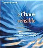 Le chaos sensible - Creation de formes par les mouvements de l'eau et de l'air