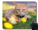 Alfombrilla de ratón Divertido Personalizado, Cuello de Perro de césped del Gato Mentira 67189 Cómodo Alfombrilla de ratón para Juegos y Oficina