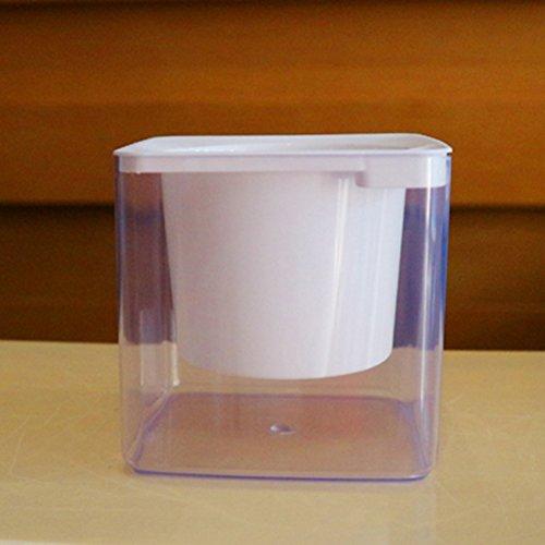 Carré Lazy d'arrosage automatique Fleur jacinthe Vert Plant-free solubles Plastique Transparent Pots de fleur de coton, blanc, Small