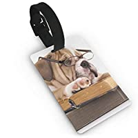 ラゲージタグ ネームタグ スーツケースタグ 荷物タグ 旅行タグ グリップ付き かわいい ブルドッグ読書 出張 旅行 紛失防止