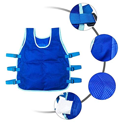 Summer Cooling Vest with 24PCS Ice Packs and 2 Insulated Bag, Summer ICY Cooling Vest Heat Resistant Apron for Men and Women adjustable, Outdoor Sports Cool Vest for Fishing,Cycling,Running,Hiking