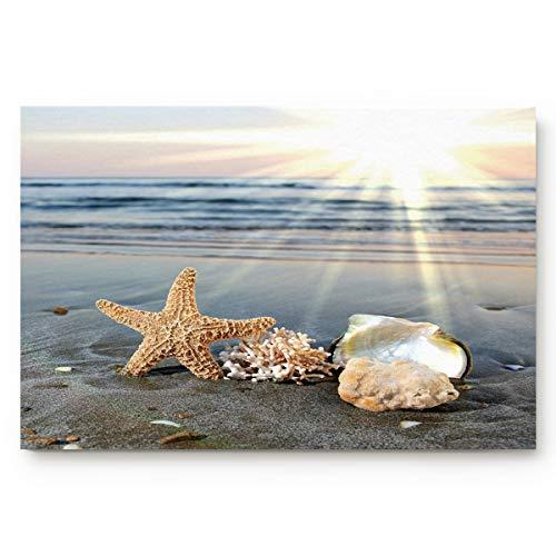Sea Starfish Shells Coastal Scents Doormats Entrance Front Door Rug Outdoors/Indoor/Bathroom/Kitchen/Bedroom/Entryway Floor Mats,Non-Slip Rubber,Low-Profile 18x30
