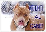 cartello, targaattenti al cane da cancello pitt bull cm 30 x 21,5
