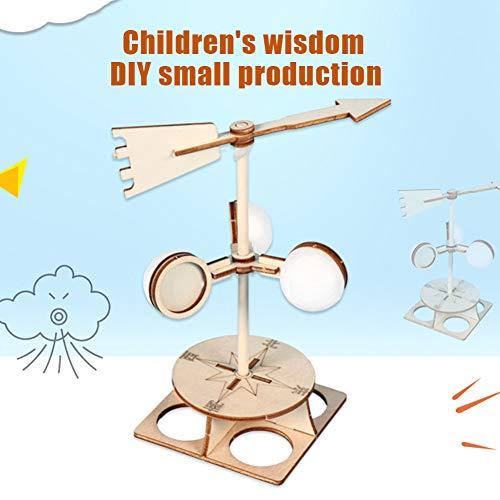 KingbeefLIU Kinder DIY Wind Vane Modell Kit Wissenschaftliche Physik Experiment Lernspielzeug Training Zu Hause Kinder Spielen Haus Früh, Um Spaß Spielzeug Zu Unterrichten Windfahne