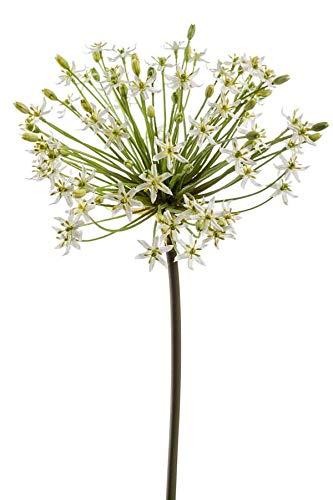artplants.de Künstliche Blume Allium BRAIS, weiß, 90cm - Kunstblume Zierlauch