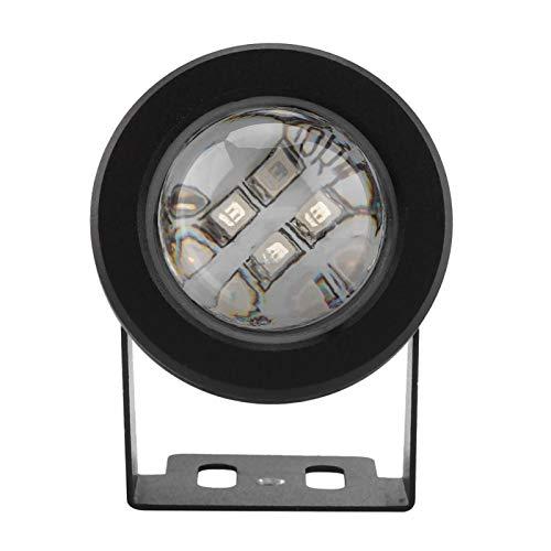 Lámpara de suelo con mando a distancia para estanque, iluminación de piscina, para jardín de rocalla para fuente