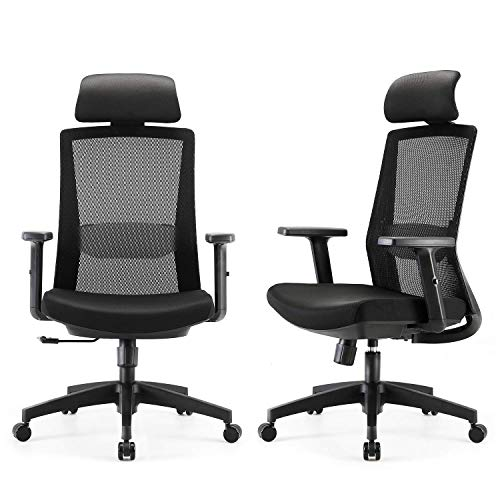 INSAEIGY SIHOO Home Office Chair, Swivel Desk Chair with Adjustable Lumbar Support and Armrests, Breathable Mesh Back and Padded Se.