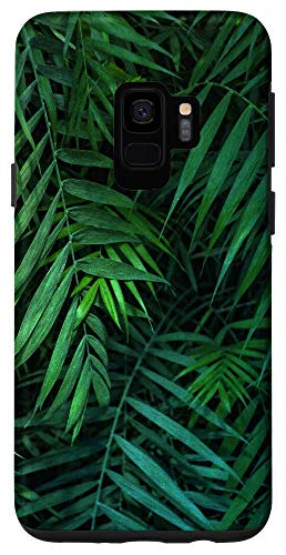 Palm Tree Cellphone Smartphone Accessories Giftsgalaxy S9 Tropical Palm Leaves Pattern Cell Phone Cover Gift Adults Case Dailymail Search for more beautiful pictures and free images on picjumbo! shop dailymail