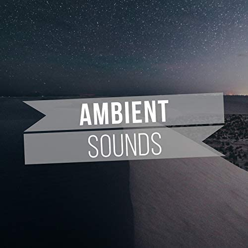 Forest Ambience & Mother Nature Sound FX