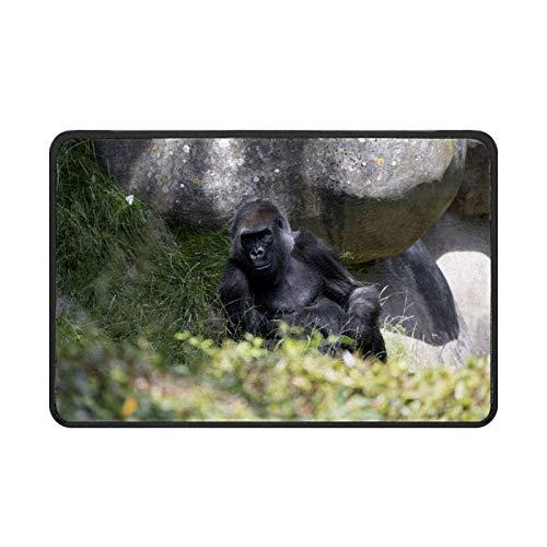 Gorilla Monkey Primate - Felpudo para puerta delantera, fácil de limpiar, antideslizante, para patio, entrada, garaje, cocina, baño, cuarto de lavandería, todo tipo de clima, interior y exterior