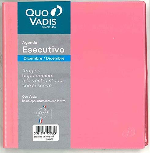 QUO VADIS 01484720MQ ESECUTIVO rub IT Fidji rosa 16x16 rosa - Anno 2020 -