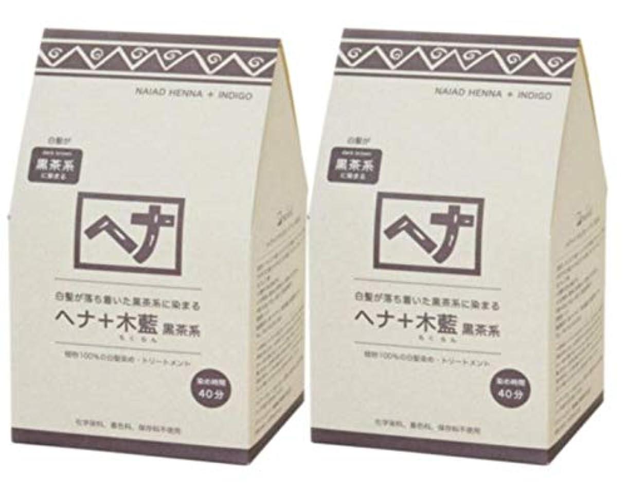 変わる変形Naiad(ナイアード) ヘナ+木藍 黒茶系 400g 2個セット