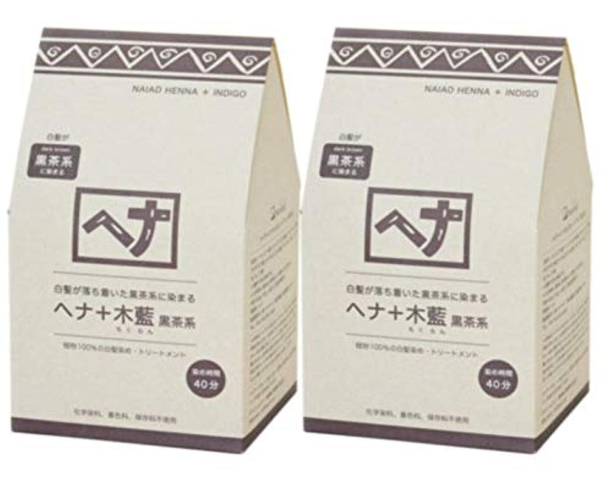 ほうき解読するアブセイNaiad(ナイアード) ヘナ+木藍 黒茶系 400g 2個セット