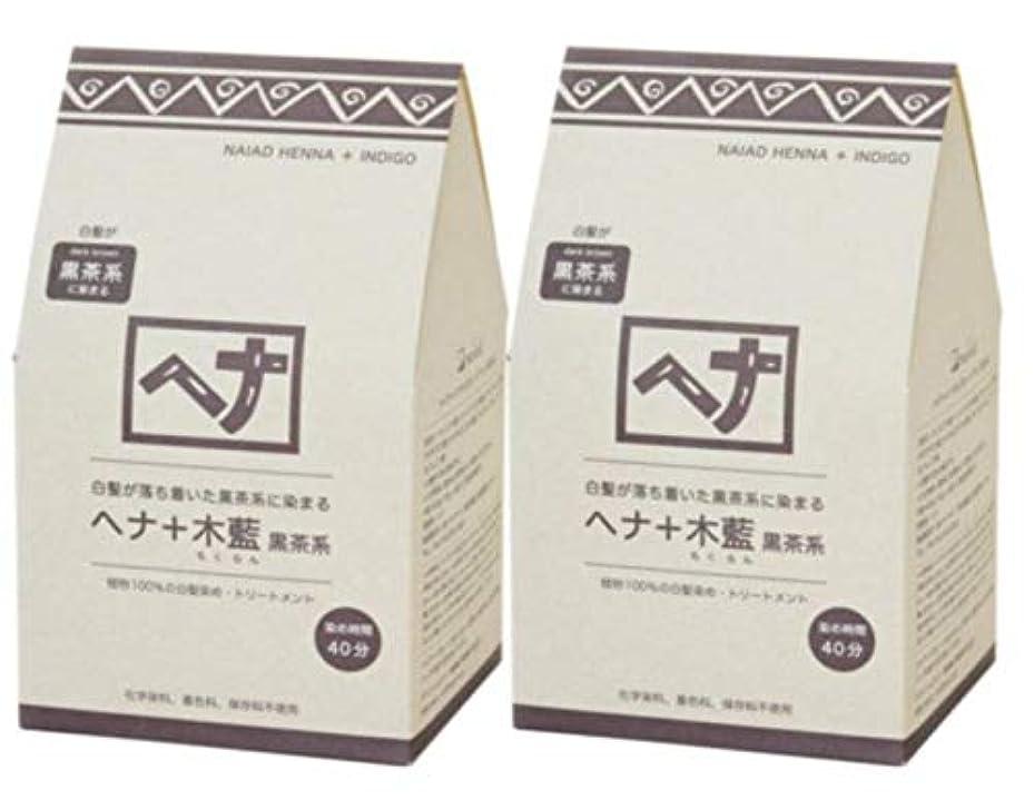 彼女ストライド会計士Naiad(ナイアード) ヘナ+木藍 黒茶系 400g 2個セット