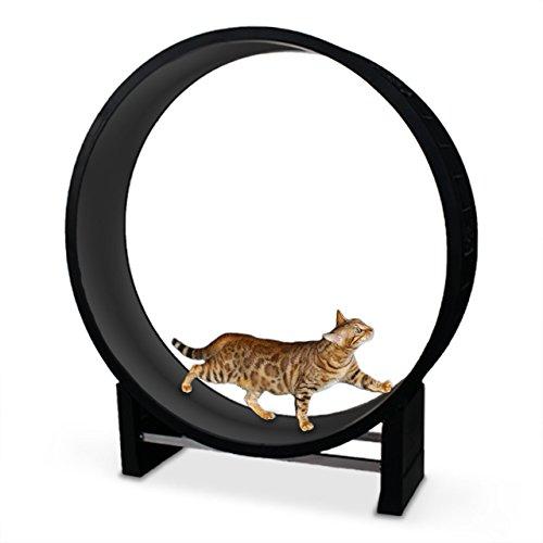 CanadianCat Company ® | Katzenlaufrad | Cat in Motion | Black/anthrazit - Trainingsgerät und Spielzeug für Katzen