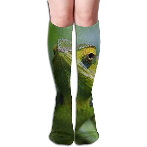 Rasyko Chameleon A Green Lizard Chaussettes de Sport Unisexe Confortables et décontractées Idéal pour la Course à Pied, Les Sports athlétiques et Les Voyages