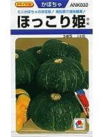 かぼちゃ 種 【 ほっこり姫 】 種子 小袋(約10粒)