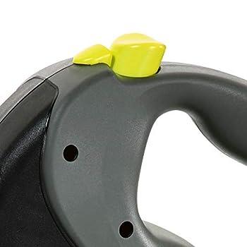 flexi Giant M Laisse Rétractable, Medium, Sangle, 8m, Noir / Neon