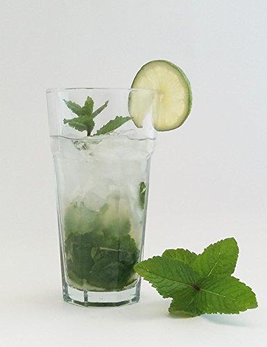 Set di 6 bicchieri in vetro temprato, per Mojito, Cuba Libre, Havana Cocktail, ecc. per barman professionisti, 400ml