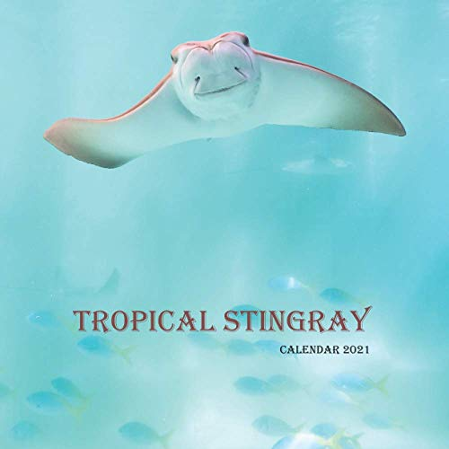 "Tropical Stingray Calendar 2021: Wall And Desk Calendar 2021, Size 8.5"" x 17"" When Open 