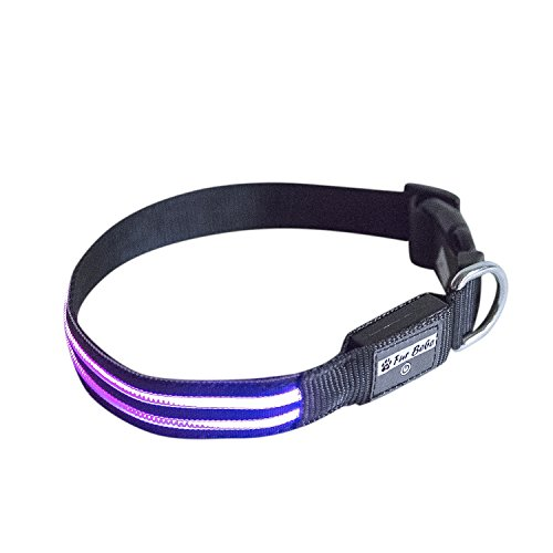 Fur Bebe LED Waterproof Lighted Collar