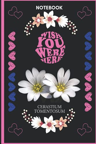 Notebook Wish You Were Here Cerastium Tomentosum: Cerastium Tomentosum Lover Blank Lined Notebook Funny Gifts Of Christmas Thanksgiving, Mother's Day ... Tomentosum Lover Women Boys And Kids.
