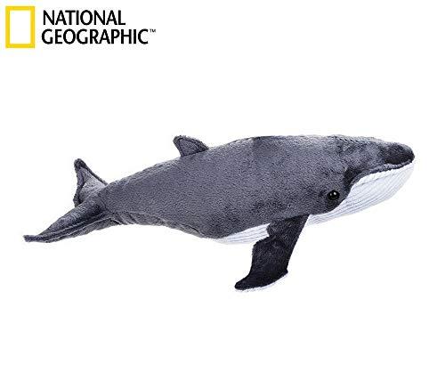 National Geographic par Lelly 40cm Ocean Whale Jouet en Peluche (Naturel)