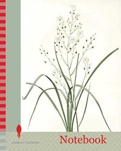 Notebook: Phalangium ramosum, Anthericum ramosum, Phalangère rameuse, Spider wort, Redouté, Pierre Joseph, 1759-1840, les liliacees, 1802 - 1816