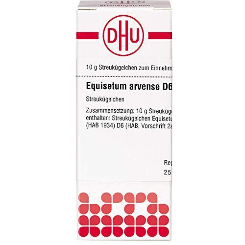 DHU Equisetum arvense D6 Streukügelchen, 10 g Globuli