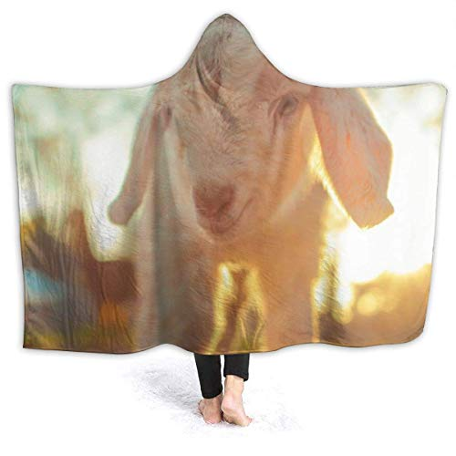 Manta con capucha que se puede llevar cabras bebé super suave de gran tamaño para adultos, mujeres y hombres | Manta de tiro cálida para llevar, picnic de viaje, sofá que vive, 50 x 40 pulgadas