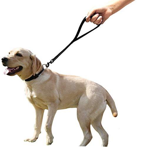 Lemmikki - Guinzaglio corto per cani, con comoda impugnatura imbottita, resistente, 63,5 cm