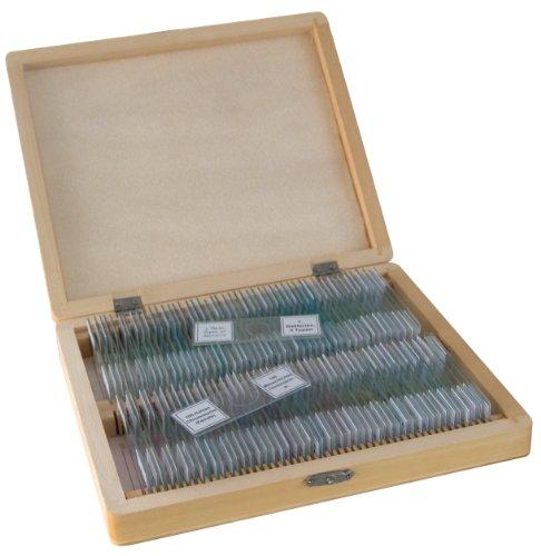 100 Mikroskop-Dauerpräparate von Bresser in edler Holzbox