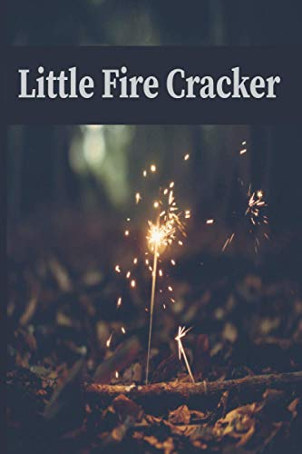 Little Fire Cracker: firework fuse ,wedding sparkles, 4th of july sparklers , diwali firecrackers , Fireworks sticks , party,birthday , notebook , journal