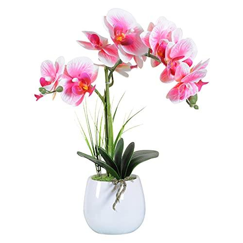 VIVILINEN Orquideas Artificiales en Maceta Flores Artificiales Plásticos Flor de Phalaenopsis Realistas Orquídea Mariposa con Maceta Cerámica Decoración Cálida para Hogar Dormitorio y Oficina (Pink)