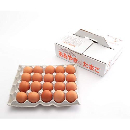 [青柳養鶏場] 卵 純国産鶏種 あおやぎたまご おうはん卵 20個 /ギフト