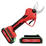 WONDER MASTER Professional Cordless Pruner Electric Pruning Shears Tree Pruner 2Pcs Backup Rechargeable 2Ah Lithium Battery Powered Tree Branch Pruner, 30mm (1.2 Inch) Cutting Diameter