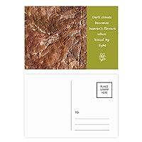 茶色の岩粗面パターン 詩のポストカードセットサンクスカード郵送側20個
