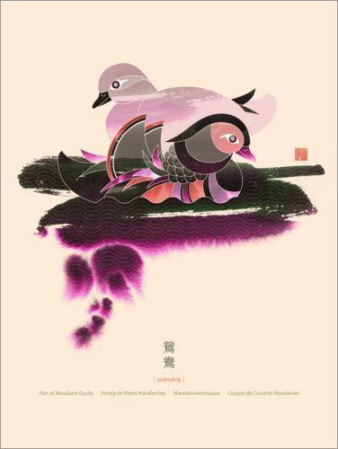 Posterlounge Tableau en Bois 50 x 70 cm: Pair of Mandarin Ducks de Thoth Adan