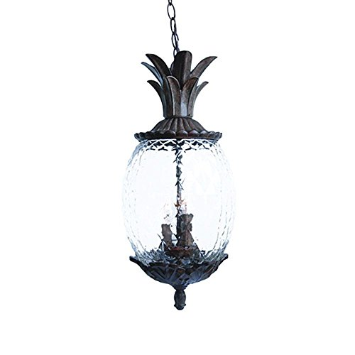 Acclaim 7516BC Lanai Collection 3-Light Outdoor Light Fixture Hanging Lantern, Black Coral