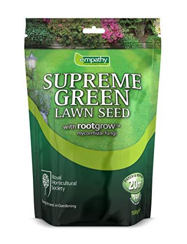 Plantworks Ltd Empathy RHS Graines de Gazon avec Rootgrow Vert 500 g