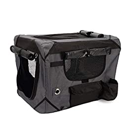 Zeus Case, Great for Travel & Training