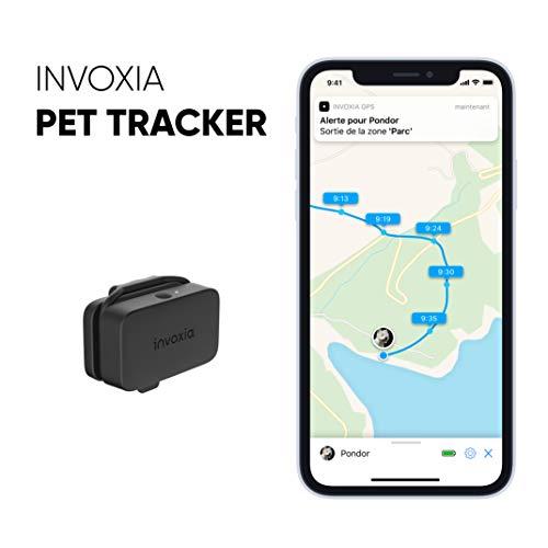 Invoxia Pet Tracker - Mini Traceur GPS pour Chats et Chiens avec Suivi d'Activité de Votre Animal - Abonnement 3 Ans Inclus - Grande Autonomie - Petit et Léger - Étanche à 1m