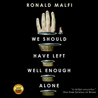 We Should Have Left Well Enough Alone audiobook cover art