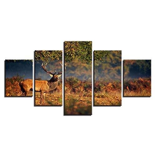 lglays Marco de pintura para pared, 5 piezas, diseño de ciervos animales, decoración del hogar, alce, pradera, paisaje, 30 x 40 x 2,30 x 60 x 2,30 x 80 cm