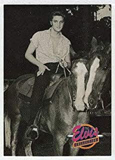 Elvis at the Gulf Hills Dude Ranch, Ocean Springs, Mississippi (Trading Card) The Elvis Collection - Series One - 1992 The River Group # 473 - Mint